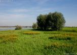 Rheinaue Xanten